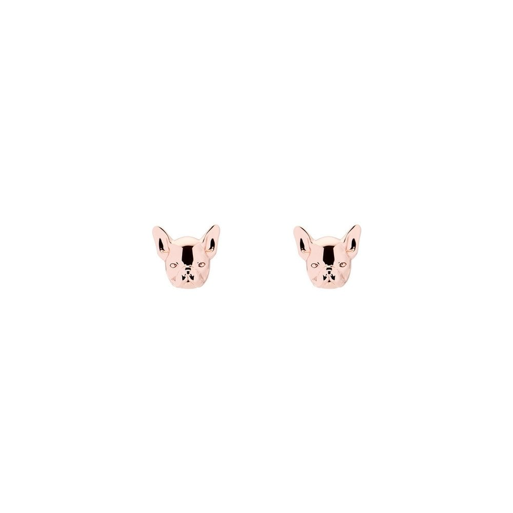 b0b3d4939d8a Ted Baker Bull Dog Earrings - Products from Gerry Browne Jewellers UK